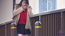 Japanese Beauties Expose Themselves - Scene 8